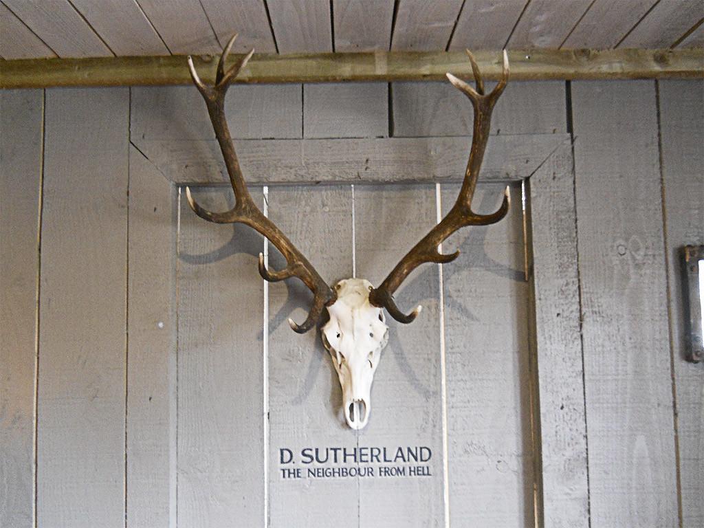 D-SUTHERLAND
