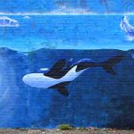 Orca painting (Dundee)