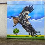 New red kite painting at knockbain farm