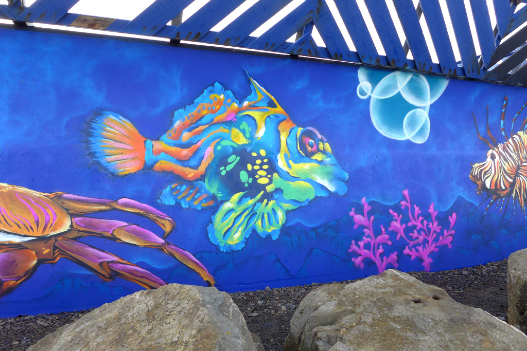 Macduff aquarium mural fresh paint for Aquarium mural