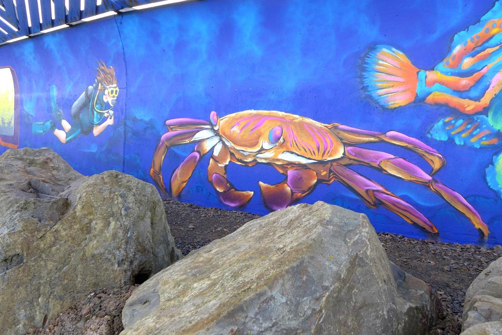 Aquarium mural 13 fresh paint for Aquarium mural gifi