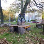 Powis owl